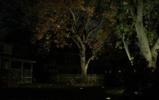 front estate yard lit at night