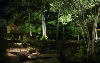 ravine lighting